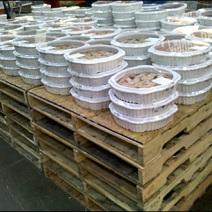 Pallets Merchandising Pies