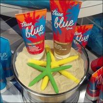 Beach Sand and Starfish Merchandising Main