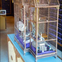 Visual Merchandising Birdcage Composite