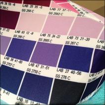 Pantone Dress Forms 3
