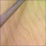Gondoal Cover in Faux Plywood Detail