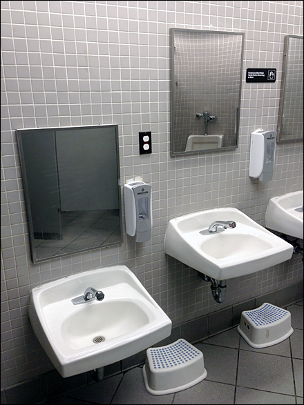 Restroom Sinks Scaled for User Size Main