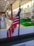 Flag Waving In Warren Aux CloseUp