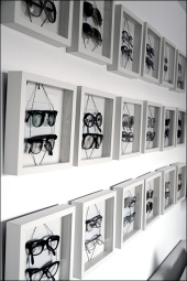 Eyewear in Shadowbox Frames Overall