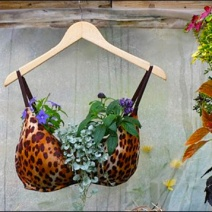Bra Planter Merchandising for Country Gilrs