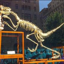 Louis Vuiiton Dinosaur 3