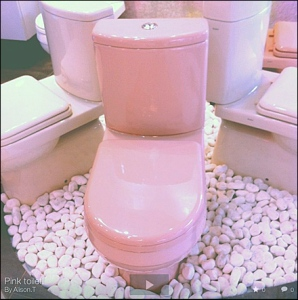 Pink toilet! by Alison T via Flickr Main