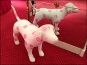 Pink Polka Dot Pets Main