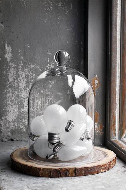 Light Bulb Bell Jar Still Life Main