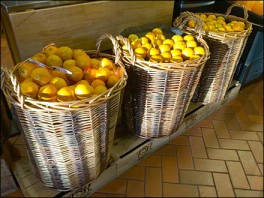 Oranges Wrapped in Wicker Overall