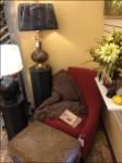 Cozy Chair Prop in Retail Aux