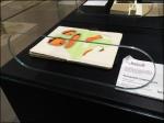 Moleskine Reach-In Museum Case A 1