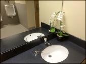 Restroom Floral Bouquet Amenity Main