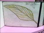 Moleskine WaterColor Notebook Aux