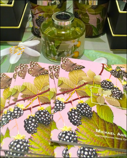 Jo Malone Blackberry Point of Purchase Collateral Main