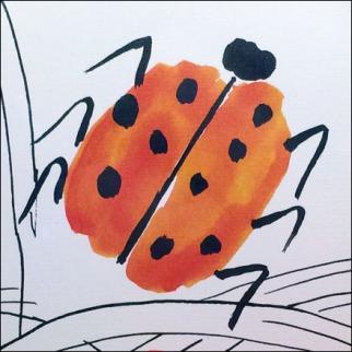 LadyBug Visual Merchandising CloseUp Detail