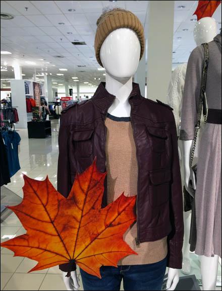 Fall Fashion Foliage Main