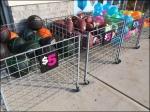 Roll-Away Bulk Bin Sidewalk Sale 1