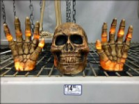 Skulls Get a Grip On Halloween