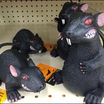 Halloween Rat 1