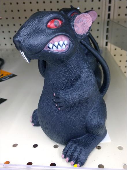 Ill-tempered Halloween Rats