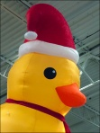 Christmas Is Just Ducky aux