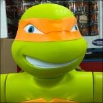 Teenage Mutant Ninja Turtles Aux