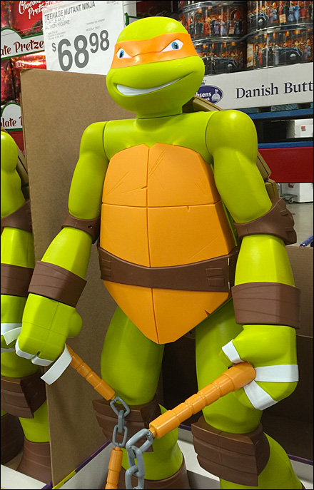 Teenage Mutant Ninja Turtles Main