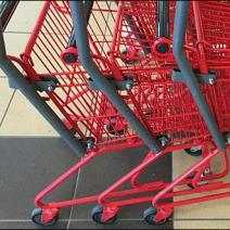 Customer in Training Shopping Cart 3