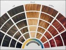 Haircolor Color Codes 3