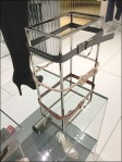 Belts on Square Space Frame Aux