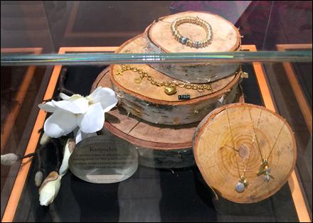 Museum Case Logs Main