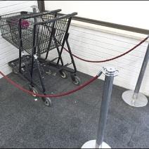 BonTon Stroller Carts 1