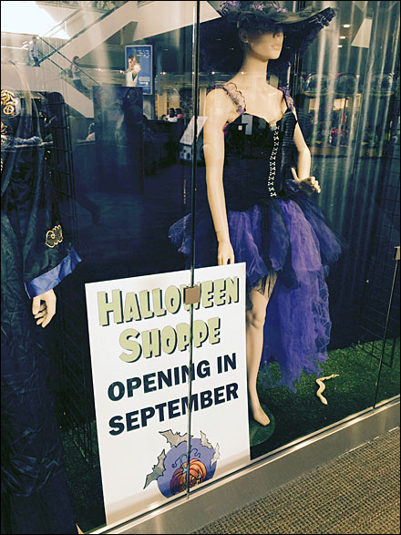 Halloween Shoppe Opening in September Windwpo Display