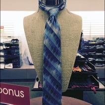 Van Heusen Necktie Form 1