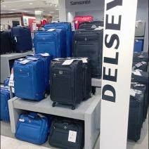 Delsey Luggage Branding Overshadowed