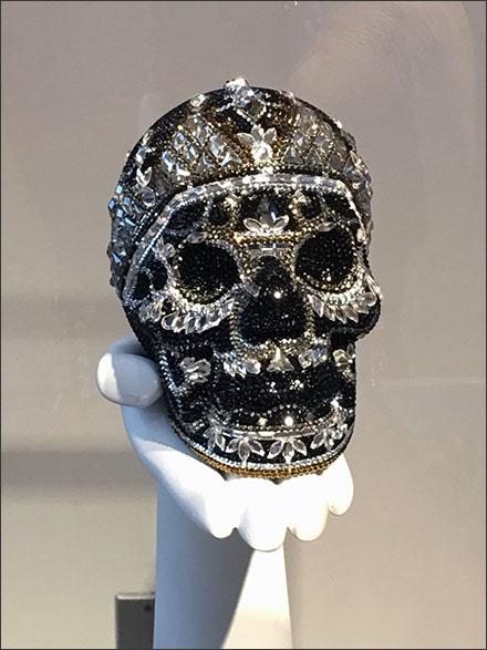 Skull Themed Merchandising - Skull Museum Case