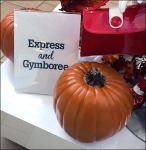 Express® and Gymboree® Mall Co-Branding