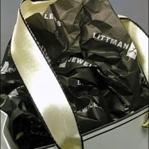 Littmans Be-Ribboned Bag 3