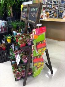 Flower & Plant Chalkboard Easel 3