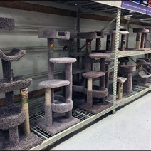 Cat Condo Pallet Rack Merchnadising 1