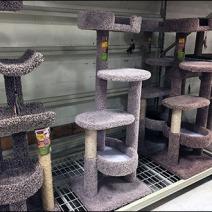 Cat Condo Pallet Rack Merchnadising 2