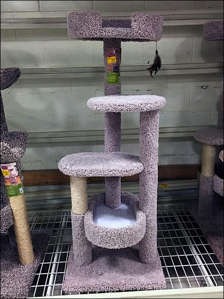 Cat Condo Pallet Rack Merchnadising Main