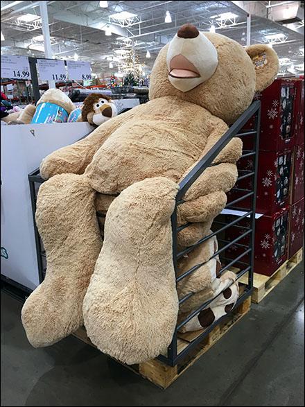 Jumbo Floppy Bear Bulk Bin Main