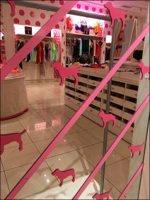 Pink Step-And-Repeat Mirror 2