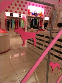Pink Step-And-Repeat Mirror 3