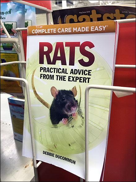 Rat Care As Category Captain Perspective