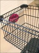 Shopping Cart Child Safety Warning 3