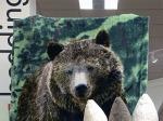 Wild Animal Plush Aux