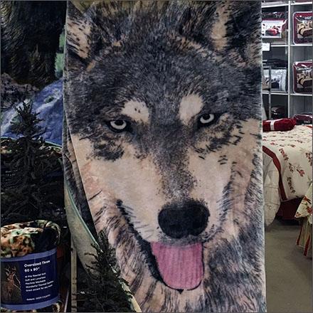 Wild Animal Plush Main